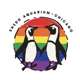Pride Penguin Vinyl Sticker